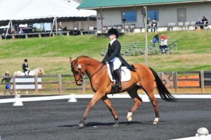 Dresden Sutherland and Dano performing the dressage portion of the show.